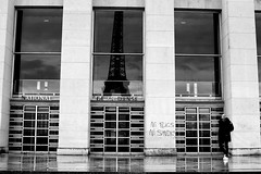 Looking at the Eiffel tower (pascalcolin1) Tags: paris toureiffel pluie rain reflets reflection homme man colonnes columns photoderue streetview urbanarte noiretblanc blackandwhite photopascalcolin 50mm canon50mm canon eiffeltower