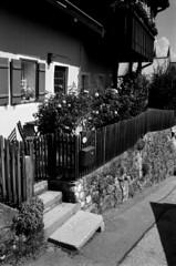 18.07-25 (analogish) Tags: 35mm 135film agfaapx100 bw berchtesgaden blackwhite film leicamp leicasummaron35mmf28 reflectaproscan7200 schwarzweiss