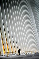 Cold NYC (jameswilkinson1) Tags: leica nyc travel building architecture urban city
