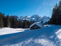 Toggenburg (oonaolivia) Tags: toggenburg wildhaus schweiz switzerland landscape landschaft nature winter winterscenery winterlandschaft schnee snow schneeschuhwandern snowshoeing