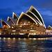 The Sydney Opera House at Dusk