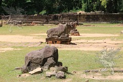 Angkor_Preah_Ko_2014_12