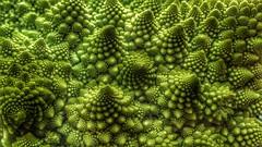 Col romanesco, el fractal vegetal. (Marina Is) Tags: ~~hmm~~ macromondays col cabbage romanesco fractal fibonaci laproporciónaurea