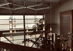#Lunch #Bistro at the #Cliffhouse (Σταύρος) Tags: angle architecture design interior restaurant sanfrancisco cliffhouserestaurant bistro cliffhouse sf city sfist thecity санфранциско sãofrancisco saofrancisco サンフランシスコ 샌프란시스코 聖弗朗西斯科 سانفرانسيسكو ristorante kalifornien californië kalifornia καλιφόρνια カリフォルニア州 캘리포니아 주 cali californie california northerncalifornia カリフォルニア 加州 калифорния แคลิฟอร์เนีย norcal كاليفورنيا