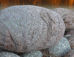 Rynkig sten (nils144) Tags: fs190331 rynkor fotosondag