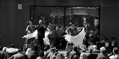 Flamenco.- en BW (angelalonso57) Tags: canon eos 7d mark ii tamron 16300mm f3563 di vc pzd b016 ƒ50 730 mm 11000 200 picture composition reflection escena baile reflejos mantón scene música trajes bn foto capture action