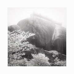 What's in a view ? (Frans van Hoogstraten) Tags: huangshanmountain china anhui winter mist misty rain hoarfrost glazedfrost glaze ice steep mood moody silence landscapephotography landscape huangshanscenicarea blackandwhite blackwhite square viewpoint leicam10p