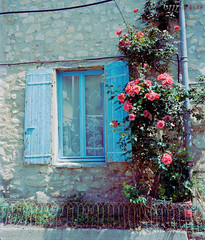Window and Roses (fs999) Tags: fs999 fschneider aficionados zinzins plaubel makina 67 plaubelmakina67 6x7 film camera filmcamera 60x70 ashotadayorso topqualityimage topqualityimageonly artcafe pentaxart corel paintshoppro paintshoppro2019ultimate 2019ultimate nikkor12880mm nikon nikkor 128 80mm 8028 roussillon roussillonenprovence provence vaucluse luberon france kodak portra kodakportra 400 portra400 400iso color négatif negative negativ tetenal colortec c41 home development plustek opticfilm 120 scanner 2400dpi silverfast ai studio