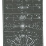 Walter Russell Chart (54)