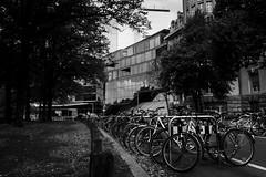(mgschiavon) Tags: blackandwhite bw blackwhite cities madebyhumans germany streets contrast
