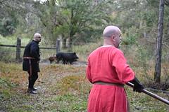 EEF_7685 (efusco) Tags: boar medieval spear brambleschoolearteofthehunt bramble schoole military arts academy florida ferel hog pig
