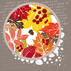 Background of stylized autumn leaves (heliga3333) Tags: autumn autumnal background banner beauty border botany branch card colorful cover decorative design fall flora floral foliage forest frame garden graphic greeting illustration invitation leaf natural nature october berries
