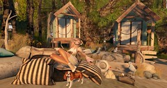 first visit to the beach (nicandralaval1) Tags: chezmoi chezmoifurniture decor decorate shutterfield bloom bloomfurnituredecor dva collabor88 c88 jian tlc eudora3d shoes fashion justbecause secondlife secondlifefashion beach kopi 7deadlys{k}ins lelutka con consignment tentacio amitomo gacha freebies gift firestormviewer lovetodecorate