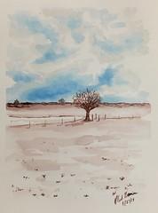 27/365. Winter fields.