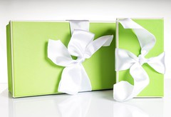 2 Presents (Karen_Chappell) Tags: gift present box green white birthday package parcel two ribbon holiday stilllife product