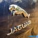 Jaguar-XJ50-31