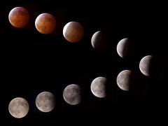 Lunar eclipse 2019 (jane.newell) Tags: 2019 moon shropshire wolfmoon bloodmoon lunareclipse lunar