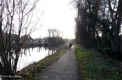 February 19th, 2019 Off to work I go (karenblakeman) Tags: river thames osney oxford uk path trees february 2019 2019pad