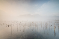 langdale tranquility (explored) (akh1981) Tags: landscape langdale moody mountains morning mist nisi nature nationalpark nisifilters nikon nationalheritage nationaltrust nationalheritagesite beautiful benro uk unesco outdoors cumbria clouds countryside calm travel tranquil wideangle walking water sunrise sky serene fog lakedistrict lakeside