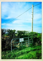 The Gate and Pole (Julie (thanks for 9 million views)) Tags: 100xthe2019edition 100x2019 image42100 htt telegraphtuesday field gate sign telegraphpole grass rural iphonese hipstamaticapp green
