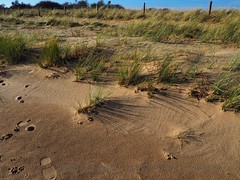 Footprints and shadows (Artybee) Tags: gibraltar point lincolnshire olympus mirrorless camera em10