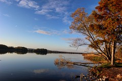 Shore (Péter Vida) Tags: pool natural temper természet tó autumn ősz