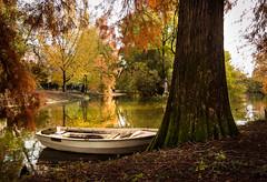 Morning ride (Alexandra Kfr) Tags: bordeaux france nature water bark boat tree outside green colours landscape