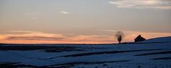 Lac des Moines, Aubrac, Aveyron (lyli12) Tags: buron neige snow hiver aubrac winter coucherdesoleil sunrise france aveyron midipyrénées landscape paysage