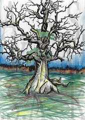 """""""An unpretentious study of an old gnarled tree I found somewhere as a stock photo on the internet"""" (Moiret) Tags: tree drawing study old nature gnarled root woods autumn spring landscape leaves sun colours studied unpretentious art artist pen paper crayons pencil bark grass sky woodland field fields sunlight shine handdrawn freehand free hand drawn drawings naturalistic rough sketch"""
