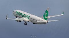 F-GZHS Transavia France Boeing 737-800 (José M. F. Almeida) Tags: spotting lisboa lisbon lis lppt aircrafts airplane airport airlines airways aircraft fgzhs transavia france boeing 737800