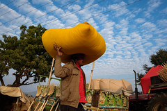 Man at work (SaumalyaGhosh.com) Tags: burden weight carry things man work sky color india pushkar blue street streetphotography fuji xt2 fujifilm