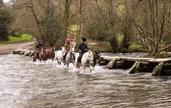 Tarr Steps, Somerset (clivea2z) Tags: unitedkingdom greatbritain england somerset exmoornationalpark exmoor clapperbridge bridge tarrsteps ancientmonument river rivercrossing horse