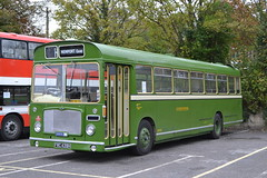 Eastern National 1516 FWC439H (Will Swain) Tags: newport quay during isle wight buses beer walks weekend 2018 14th october bus transport travel uk britain vehicle vehicles county country england english south coast island preserved heritage eastern national 1516 fwc439h