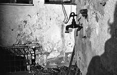 yours breathalyzers will not stop our thirst ;/) (schyter) Tags: фэд3 fed3 industar26m sovietcamera rangefinder 24x36 135 35 analogica argentica film pellicola typed125 russianfilm telemetro fsu yellowfilter filtro giallo sverdlovsk4 lightmeter sovietlightmeter d23divided stoeckler epson v600 lodi basiasco lodigiano