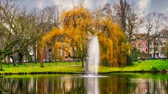 The Fountain - 6384 (ΨᗩSᗰIᘉᗴ HᗴᘉS +38 000 000 thx) Tags: fountain fontaine water park parc saule tree arbre nature belgium europa aaa namuroise look photo friends be wow yasminehens interest eu fr greatphotographers lanamuroise flickering