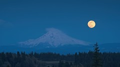 Super Moon Rising over Mount Hood 3671 A (jim.choate59) Tags: jchoate on1pics oregon landscape supermoon moon twilight mountain night dusk bluehour westlinnoregon scenic