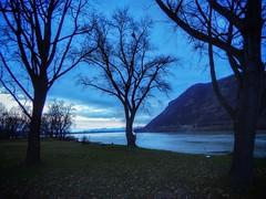 DUNAPARTON (petyhh) Tags: hdr duna river nature blue tree