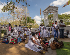 2 Sri Lanka, Anuradhapura, WHS 052 (John AT) Tags: review sri lanka selection birds buddhas