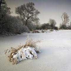 Winter (fotoswietokrzyskie) Tags: carl zeiss 1635mm sony a850 winter trees grass ice hoarfrost landscape water river snow