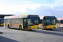 OTW 5556-5610 (Public Transport) Tags: otw tec solaris bus autobus