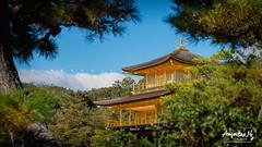 2019#8 (Augustinwee Photography) Tags: japan kyoto kinkakuji thegoldenpavilion lake garden temple sunrise morningsun travel tourist attraction tourism japantravel kyototourinfo tour vacation winterseason