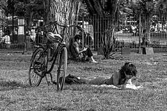 Bicicleta y lectura (Wal Wsg) Tags: bike bicicleta bici bicicletas bicicletta bicis biciclettas bicicletasestacionadas biciparlare leyendo lectura lecture lectora lectores reading reader read leer lee lector argentina buenosaires caba capitalfederal ciudaddebuenosaires villacrespo parquecentenario byn bw blackandwhite blancoynegro canon canonesorebelt6i canont6i phwalwsg photography photo fotografia foto fotocallejera candid candidstreet street calles
