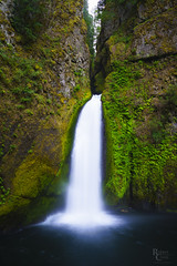 Thundering Wahclella (RobertCross1 (off and on)) Tags: a7rii alpha cascaderange cascades columbiarivergorge emount fe1635mmf4zaoss hoodriver ilce7rm2 longexposure multnomah nationalscenicarea or oregon pacificnorthwest sony tannercreek wahclellafalls canyon creek ferns forest fullframe gorge landscape mirrorless moss nature pool rainforest trees water waterfall