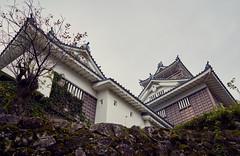 Japanese castle (KaeriRin) Tags: sony7m2 28mm20 japan castle japanese autumn leaves red green sky trees