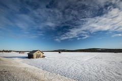 Z19_1316 LT (Zoran Babich) Tags: lapland lappi finland suomi winter landscape