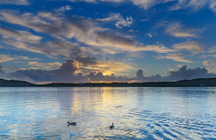 Early Morning Bay Waterscape (Merrillie) Tags: daybreak woywoy landscape nature bay reflections foreshore newsouthwales clouds earlymorning nsw brisbanewater sky australia cloudy morning coastal water outdoors waterscape sunrise centralcoast ducks dawn