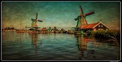 Zansee Schans_Netherlands (ferdahejl) Tags: zanseeschans netherlands canondslr dslr canoneos800d