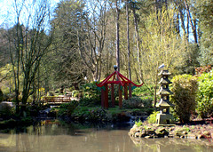 Scarborough Peasholm Park - Japanese gardens (Tony Worrall) Tags: scarborough peasholm park peasholmpark north update place location uk england visit area attraction open stream tour country item greatbritain britain english british gb capture buy stock sell sale outside outdoors caught photo shoot shot picture captured ilobsterit instragram yorkshire yorks scene scenery northyorkshire resort yorkshirephotos east eastern seasidetown holidays tourists coast spring trees bloom nature natural beauty japanesegardens