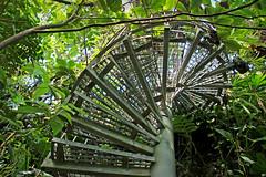 Wendeltreppe IMG_5571 (pappleany) Tags: wendeltreppe spralstaircase pappleany indoor gewächshaus botanischergarten erlangen glasshouse botanicalgarden