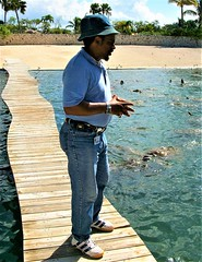 tour guide at Grand Cayman Turtle Farm (miosoleegrant2) Tags: daddy silverdaddies seniors mature men siverdaddy silverfox fit old hombre maduro guapo portrait grey guy man older vacation tourist outside male butch gentleman guys dude studly manly dudes handsome stud candid hunk sexy masculine people beardy barbate jeans butt hat cap